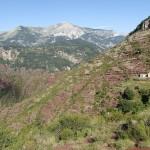 Paysage sur la marche d'approche de la Clue d'Amen où l'on fera du canyoning extrême vers Nice