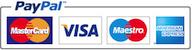Paiement Paypal en ligne