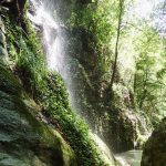 Amibance tropicale dans le canyon de Pierrefeu près de Cagnes et Nice