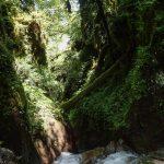 Départ en canyoning dans le moulin de Roubion près d'Isola 2000